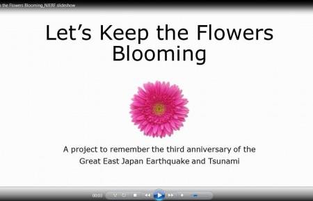 flowers bloom image